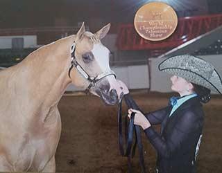http://jandfminiatures.com/Gracie/Gracie-World-Champion-Palomino-2017-sm.jpg
