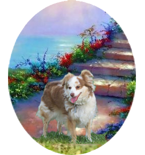http://jandfminiatures.com/aussie_files/Lady-Rainbow-Bridge-small.png